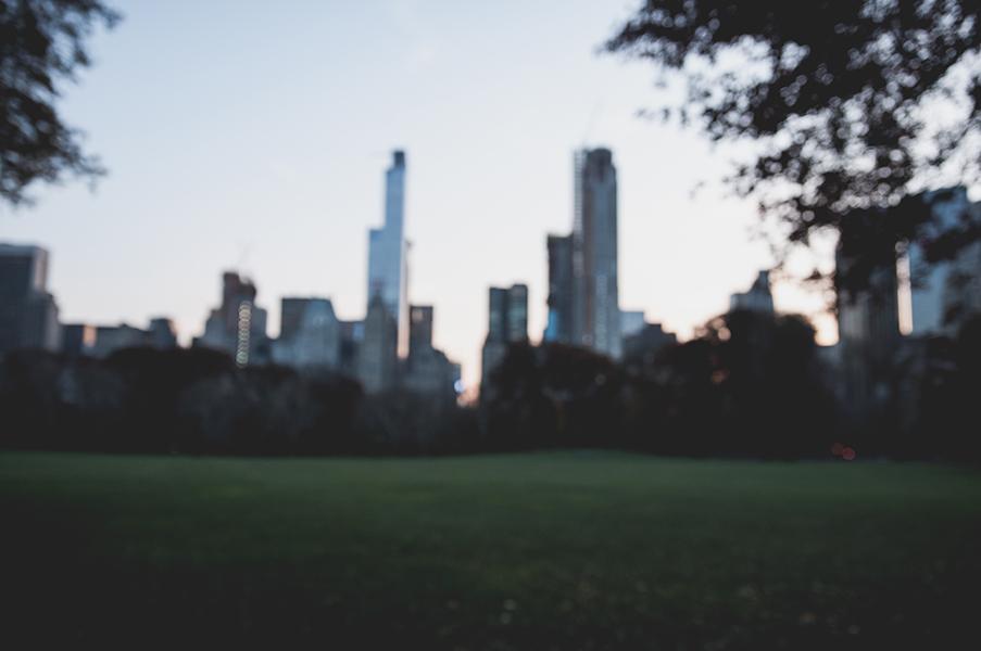 sara vizintin NY